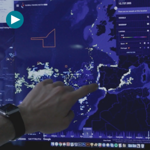 Vizzuality, los mapas del Big Data