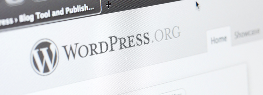 wordpress negocio