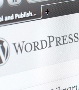 wordpress_pluggins_imprescindibles